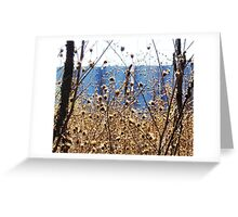 Railroad right of way, 3M plant, Cottage Grove, MN Greeting Card