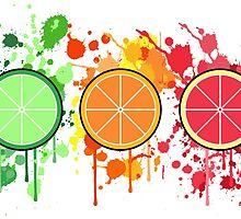 Citrus by Dakota McCormick