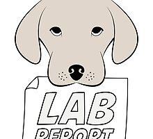 Lab Report by Ruben Wills