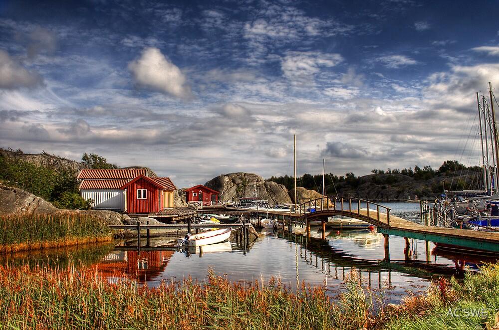 Swedish summer by aakashchawade