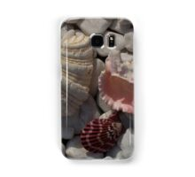 A selection of colorful sea shells Samsung Galaxy Case/Skin