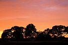 Afterglow by Jo Nijenhuis