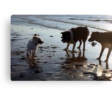 Play with me! Canvas Print
