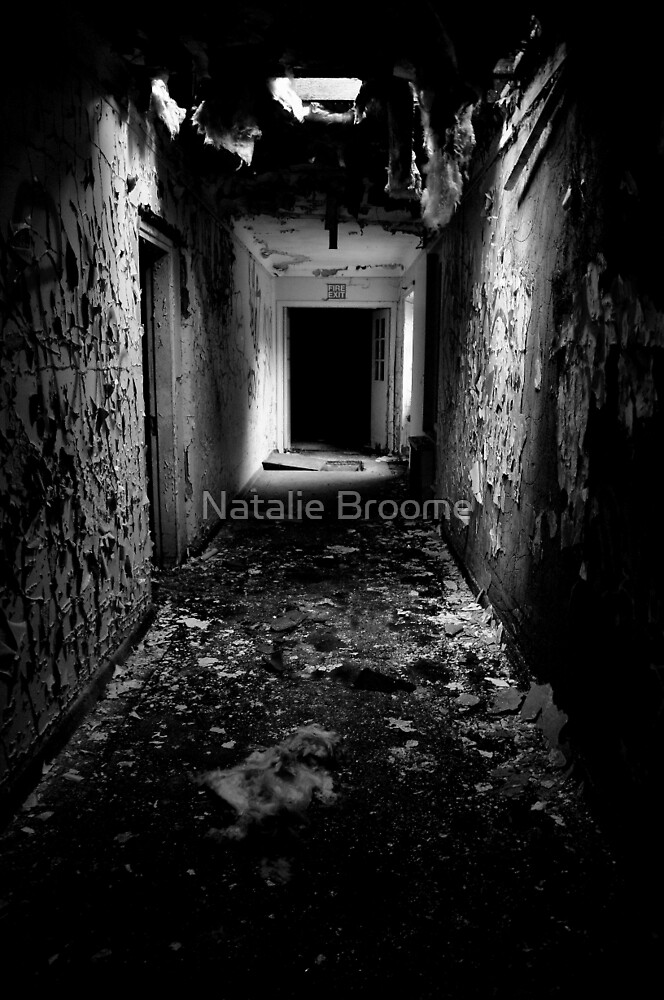 Urban Decay by Natalie Broome