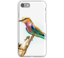Beautiful Lilac Breasted Roller iPhone Case/Skin