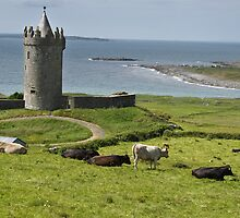 european irish castle in county clare by upthebanner