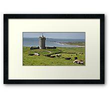 european irish castle in county clare Framed Print