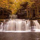 Cotter Force, North Yorkshire by davidrhscott