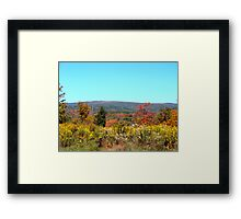The Flavor of Fall Framed Print