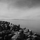 Great Salt Lake Beauty by tc5953