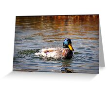 Duck All Wet Greeting Card