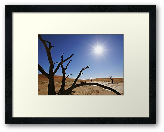 Deadvlei  by Natalie Broome
