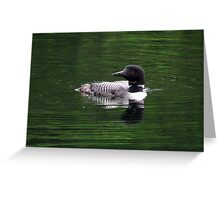 Loon- Northern Ontario Greeting Card