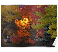 "Night ""Fall"" Poster"