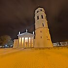 Cathedral of Vilnius by Stefan Trenker
