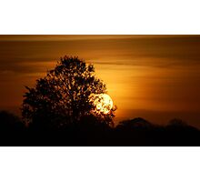 Wetlands Sunset Photographic Print