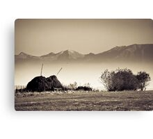 OnePhotoPerDay Series: 302 by L. Canvas Print