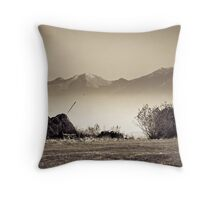 OnePhotoPerDay Series: 302 by L. Throw Pillow