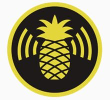 Wifi Pineapple by pavelic179