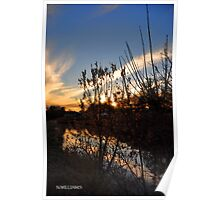 Sunset at the Canal Poster