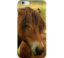 Exmoor Pony with Foal iPhone Case/Skin
