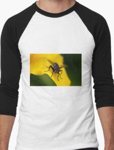 Mr Fly Men's Baseball ¾ T-Shirt