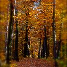 ♥ ♥ ♥ ♥ series. Autumn Leaves (Les Feuilles Mortes).Memories of those happy times when we were all together. Brown Sugar Storybook.  Favorites: 13 Views: 1742 . Thanks! by AndGoszcz