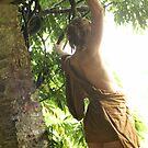 Amazon by Rebecca Tun