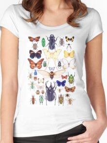 Insect collection Women's Fitted Scoop T-Shirt