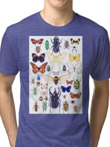 Insect collection Tri-blend T-Shirt
