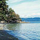 Resting Beach by James Zickmantel