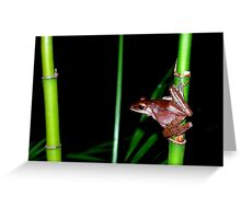 Vietnamese Frog Greeting Card