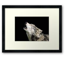 The Jubilation Of The Wolves Framed Print