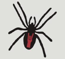 Rockback Spider by Cathie Tranent