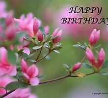 Happy Birthday Flowers (2) by DebbieCHayes