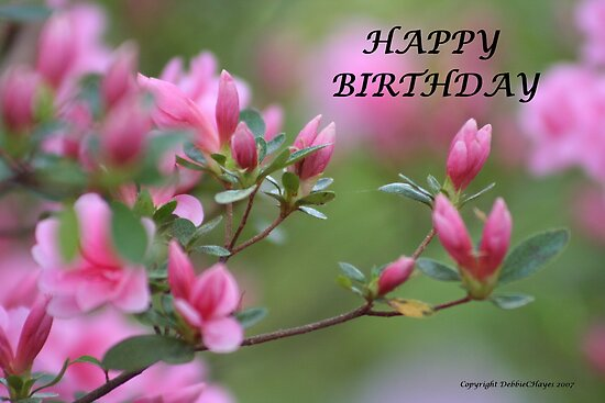 Happy Birthday Cards Flowers ~ Quot happy birthday flowers by debbiechayes redbubble