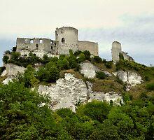 Chateau Galliard by probono