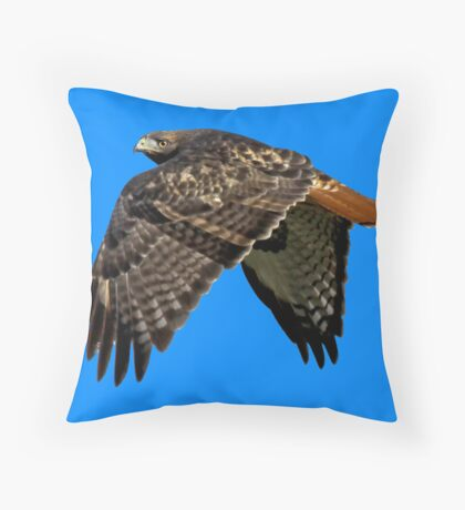 Red-Tailed Hawk ~ (Buteo jamaicensis) Throw Pillow