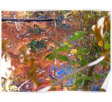 Coloured Autumn Shafts Poster