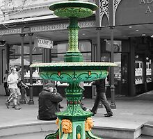 Adelaide Arcade Fountain by Rochelle Buckley