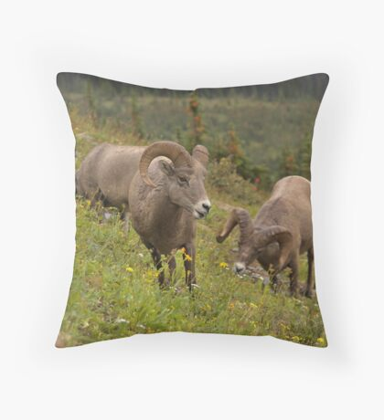 Glacier Rams Throw Pillow