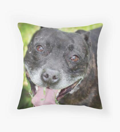 Staffordshire bull terrier Throw Pillow