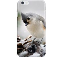 Playful Titmouse iPhone Case/Skin
