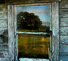 Barn Window by antonio55