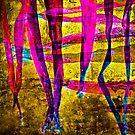 A Dream by finnarct