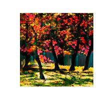 Red Bud Tree - Prints Photographic Print