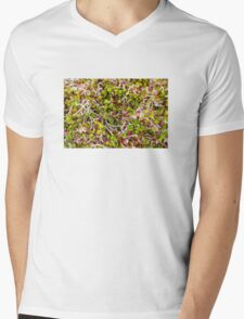 Macro of clover sprouts Mens V-Neck T-Shirt