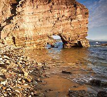 Fossil Cove, Tinderbox, Tasmania by Chris Cobern