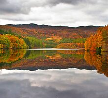 Autumn Reflections by tomanthony