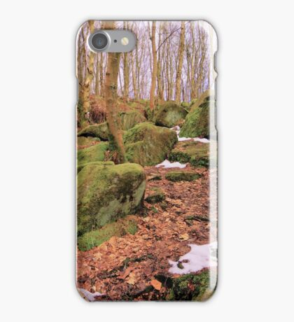 Moss Rocks In The Woods iPhone Case/Skin